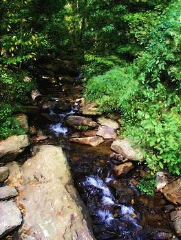 Amicalola Falls by Jennifer Hotai