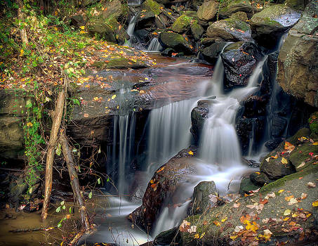 Amicalola Waterfall by Anna Rumiantseva