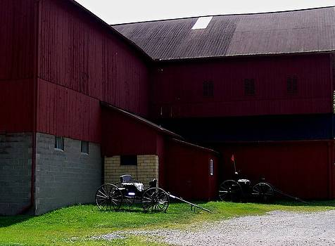 Marysue Ryan - Amish Barn Ohio