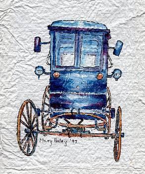 Amish cart by Mary Haley-Rocks