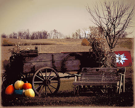 Amish Countryside by Chanda Yoder