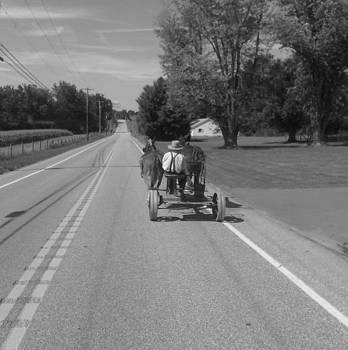 Amish Horse Cart by Mark C Ettinger