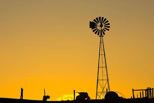 Amish Sunset by Soccer Dog Design