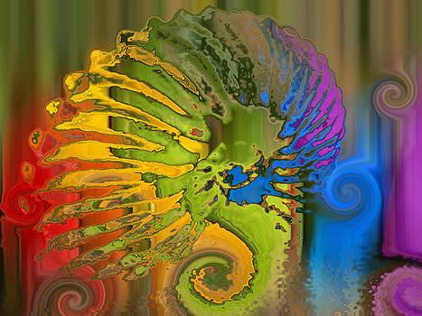Ammonite 2 by Soumya Bouchachi