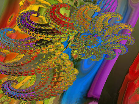 Ammonite 4 by Soumya Bouchachi