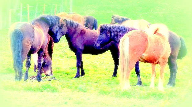 A Horse Most Of All Wanna Be One Among The Other Horses by Hilde Widerberg
