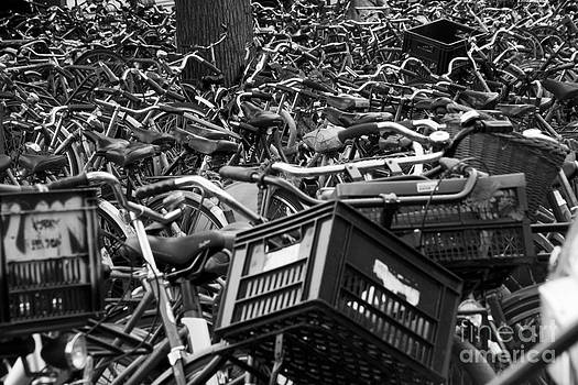 Amsterdam Bicycles in Black and White by Amy Bynum