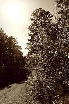 Nina Fosdick - An Afternoon Walk