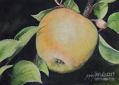 An Apple a Day...SOLD  by Sandy Brindle