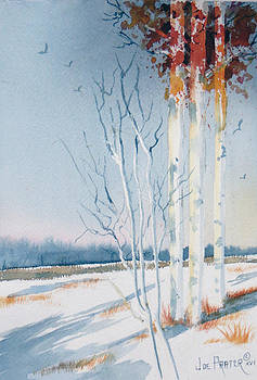 An Early Fall Snow  by Joe Prater