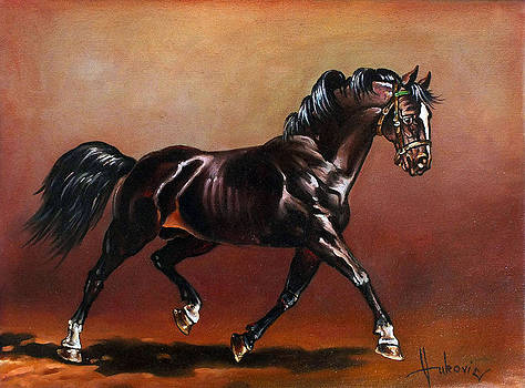 An irrepressible stallion by Dusan Vukovic