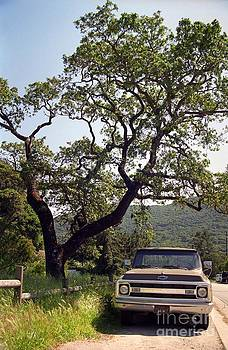 An Oak Tree and a Chevy Pickup  by James B Toy