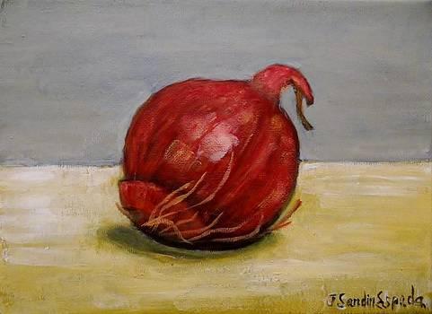 An onion by Juan Sandin
