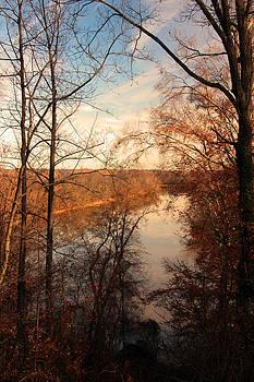 Carolyn Stagger Cokley - anacostia river 6457