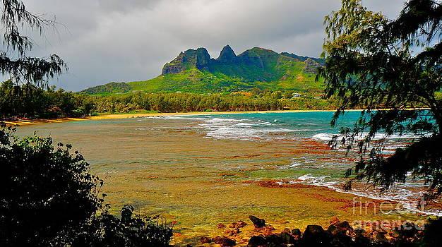 Tracey McQuain - Anahola Beach Kauai