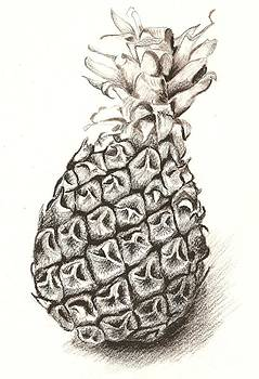 Ananas No.1 by Roswitha Schmuecker