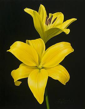 Anastacias Lilies by Gary  Hernandez
