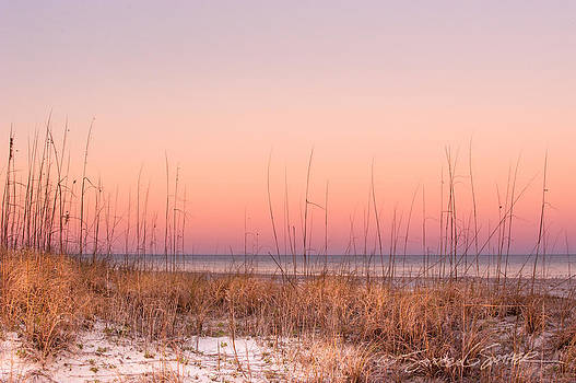 Anastasia Beach Dunes sunset by Stacey Sather