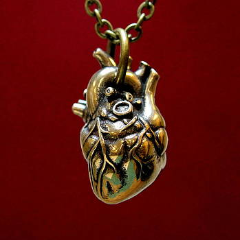 Anatomical Human Heart Pendant Necklace by Michael  Doyle