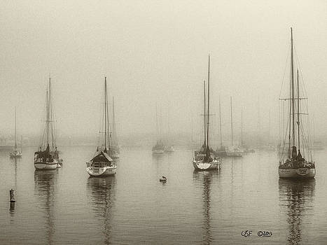Anchored at Dawn by Chris Fieldhouse