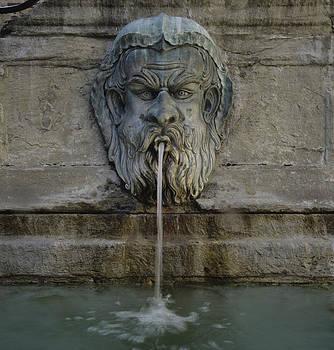Susan Rovira - Ancient Fountain