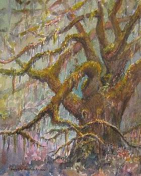 Ancient Oak by Dorothy Allston Rogers