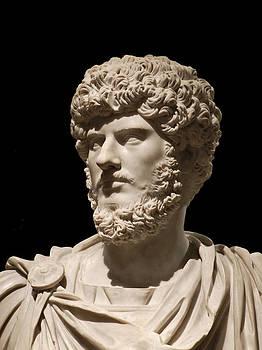 Stuart Brown - Ancient Roman Bust # 3