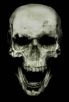 Ancient Skull by Raghav Ram