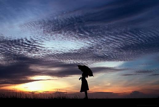 And The Sky Full Of Wonder by Chrystyne Novack