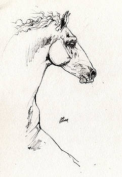 Angel Ciesniarska - Andalusian horse sketch 2014 05 29