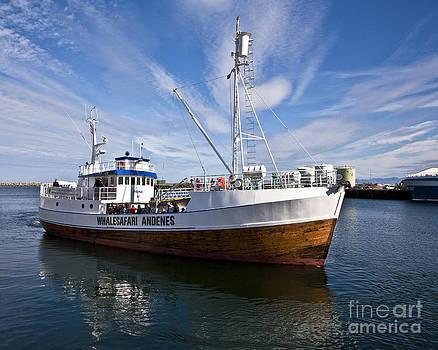 Heiko Koehrer-Wagner - Andenes Safari Boat