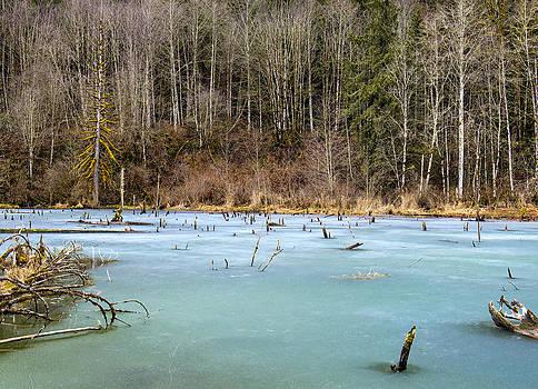 Paul W Sharpe Aka Wizard of Wonders - Anderson Creek Pond
