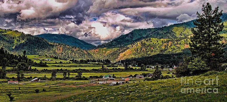 Anderson Creek by Sam Rosen
