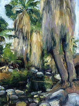 Stacy Vosberg - Andreas Canyon Palms