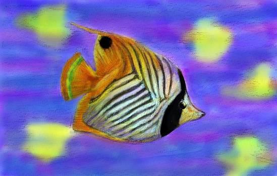 Angel Fish by Yumi Kudo