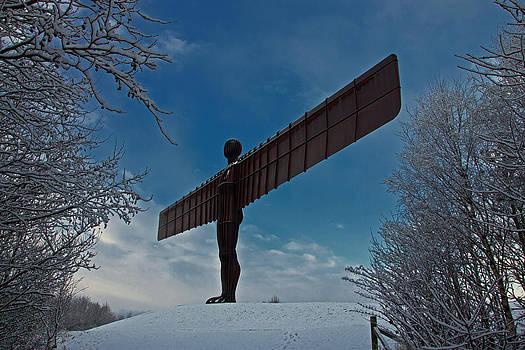 David Pringle - Angel in the Snow