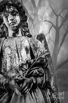 Sonja Quintero - Angel in The Trees