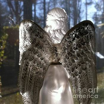 Angel in the Window by Cindy Holland
