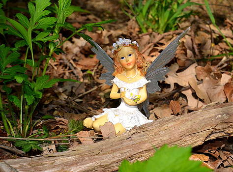 Linda Rae Cuthbertson - Angel In The Woods - Woodland Fairies