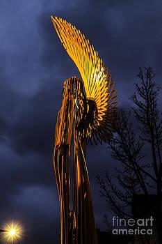 Steve Purnell - Angel Of The Morning