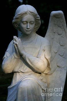 Angel by Rachel Reading