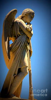 Angel Watching by Lisa L Silva