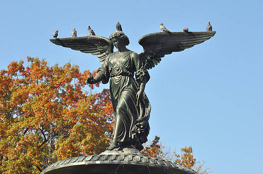 Central Park Angel with pigeons by Diane Lent