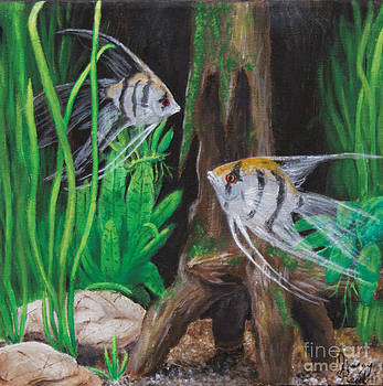 Angelfish Encounter by Jeremy Reed