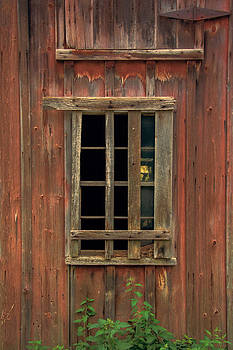 Angelica Barn Window by Guy Whiteley