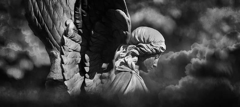 Angel's Flight by Marc Huebner