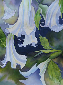 Angel's Trumpets by Stephanie Zobrist