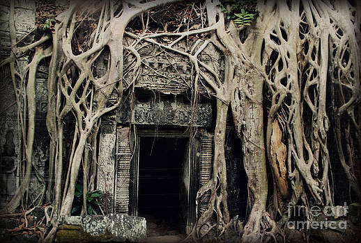 Angkor Wat Ta Prohm Door Aged by Nola Lee Kelsey
