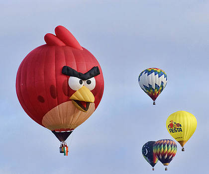 Wes and Dotty Weber - Angry Bird