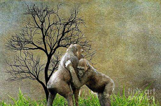 Liane Wright - Animal - Gorillas - Isn